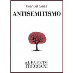 Imanuel Geiss - Antisemitismo