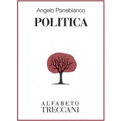Angelo Panebianco - Politica